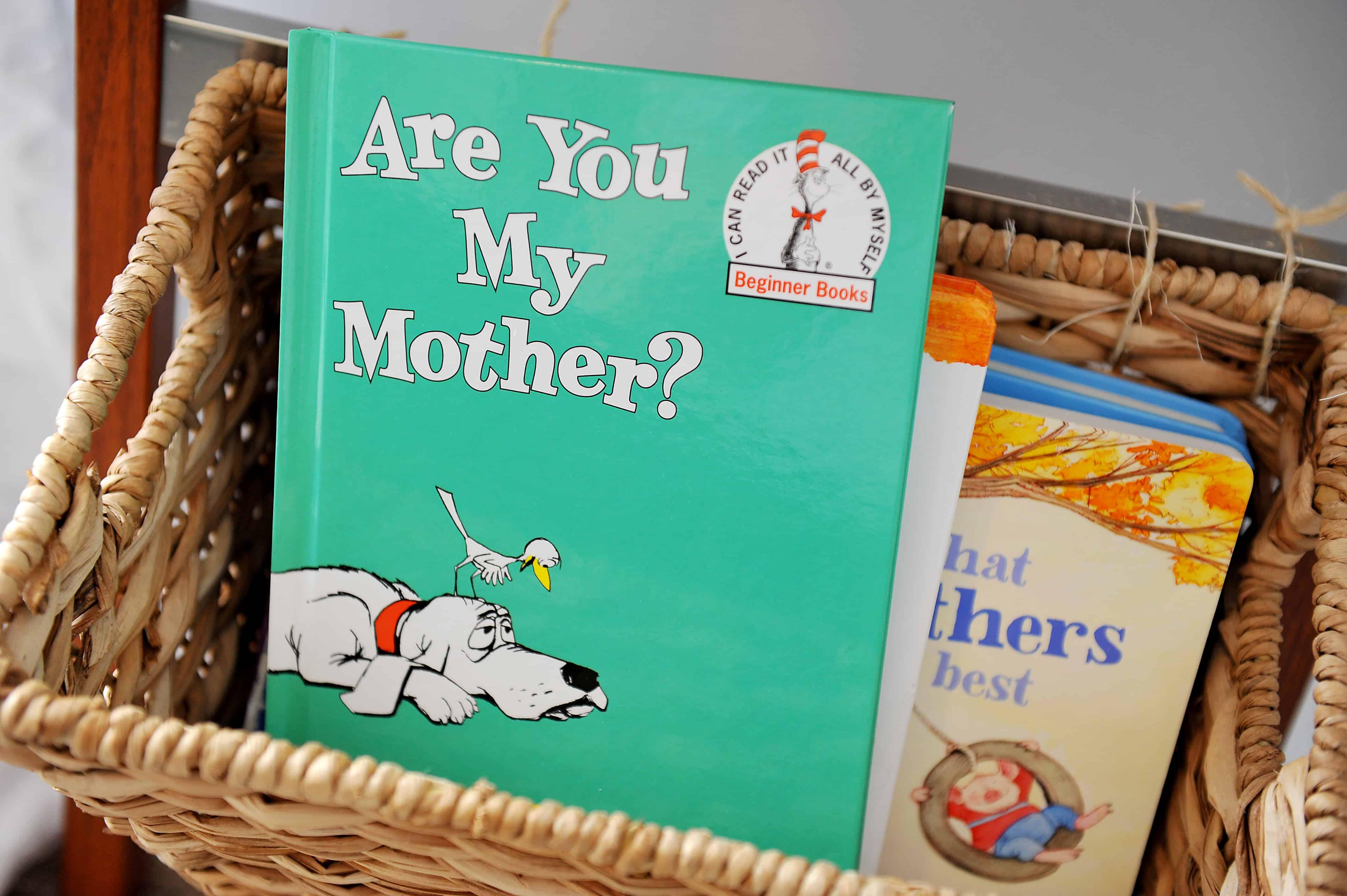 are you my mother book in basket | Modern Boy Nursery Decor