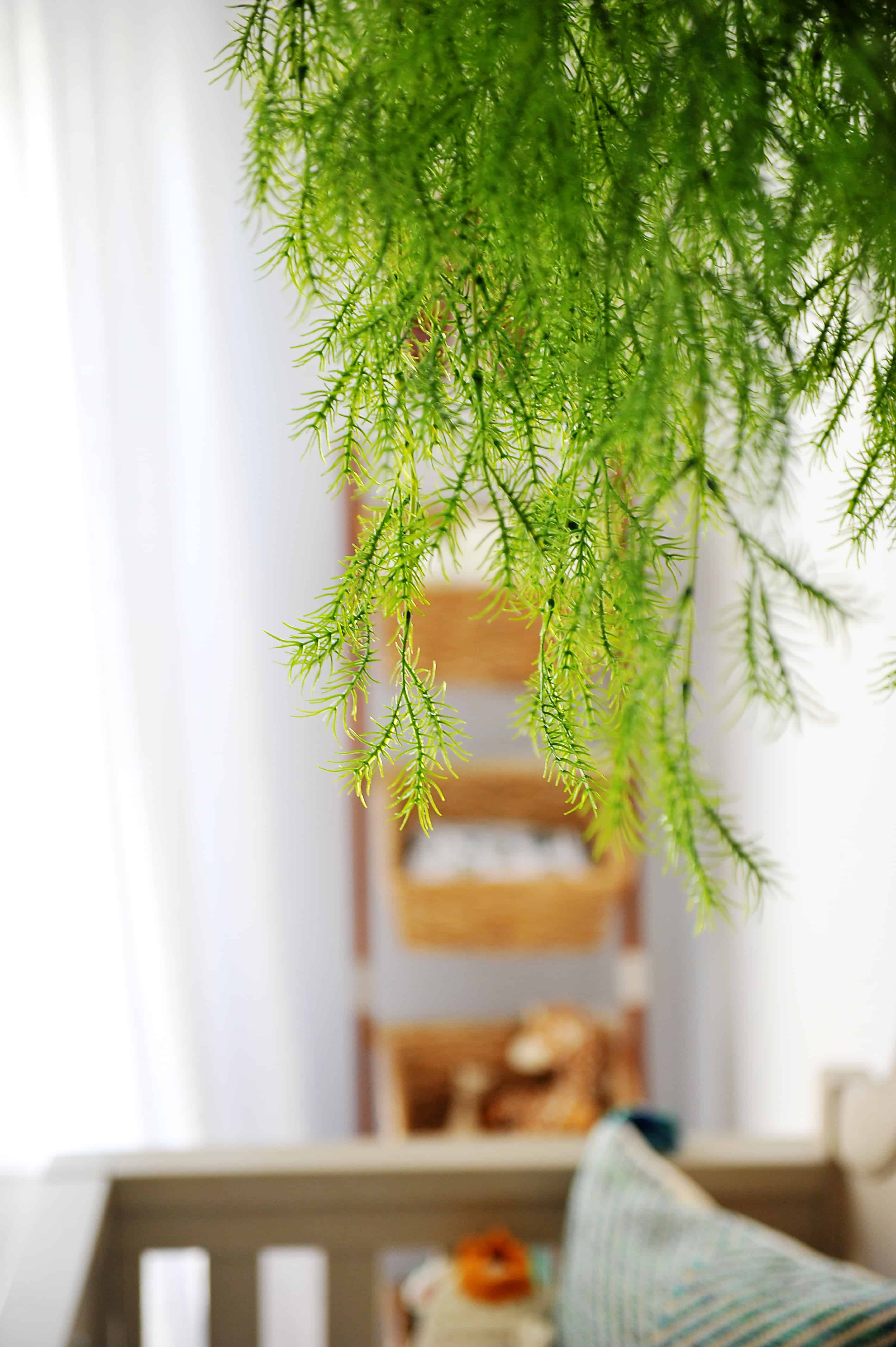 greenery hanging in front of ladder