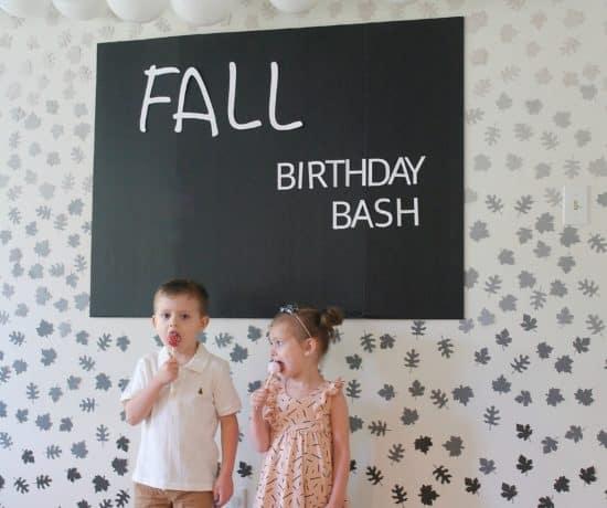 Fall Birthday Party on budget - www..arinsolangeathome.com