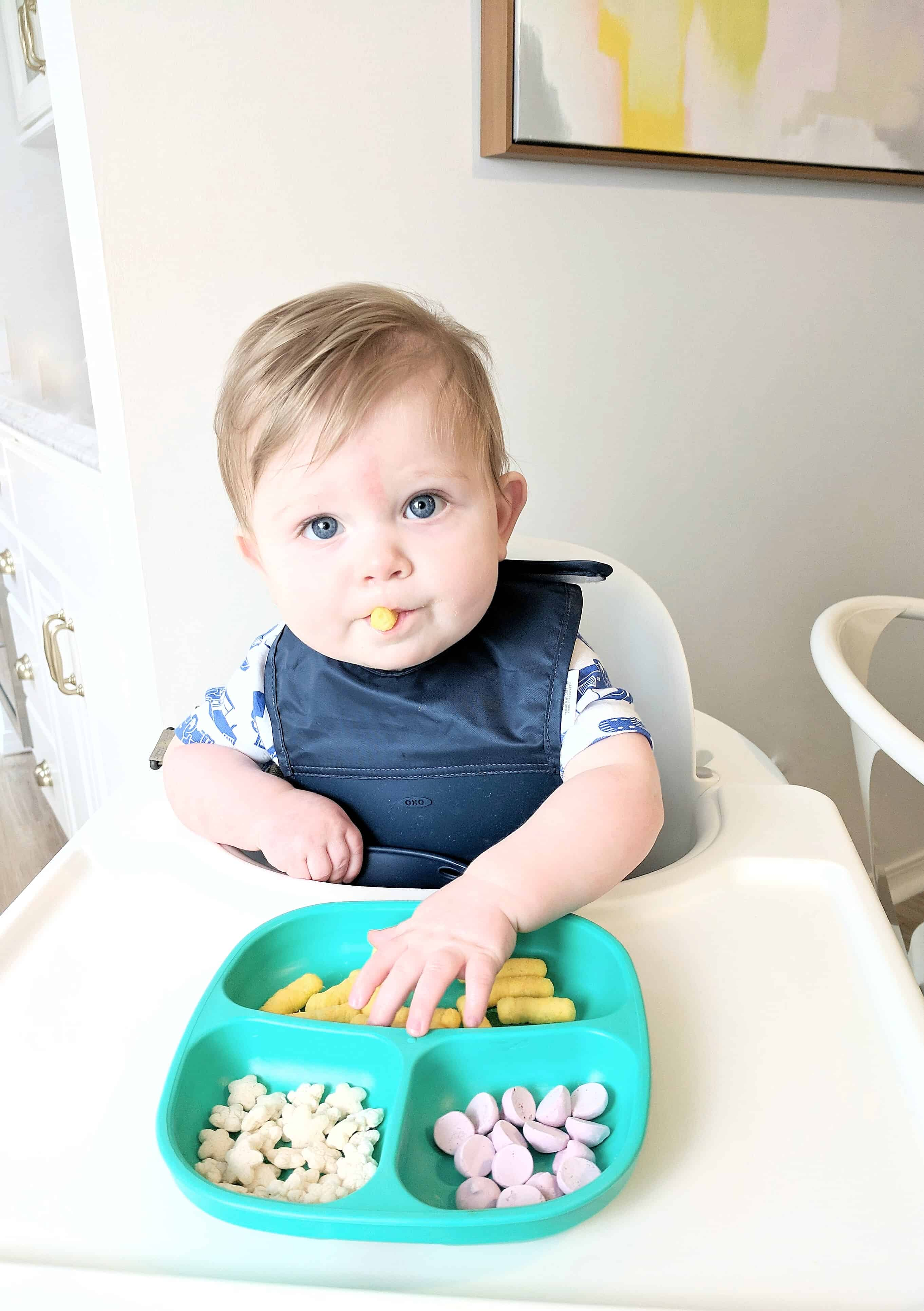 baby boy eating a plate of snacks | Feeding Babies On The Go
