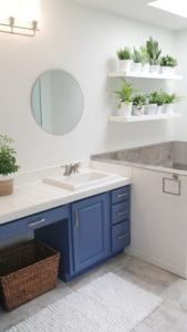 blue bathroom cabinets and shelves with greenery