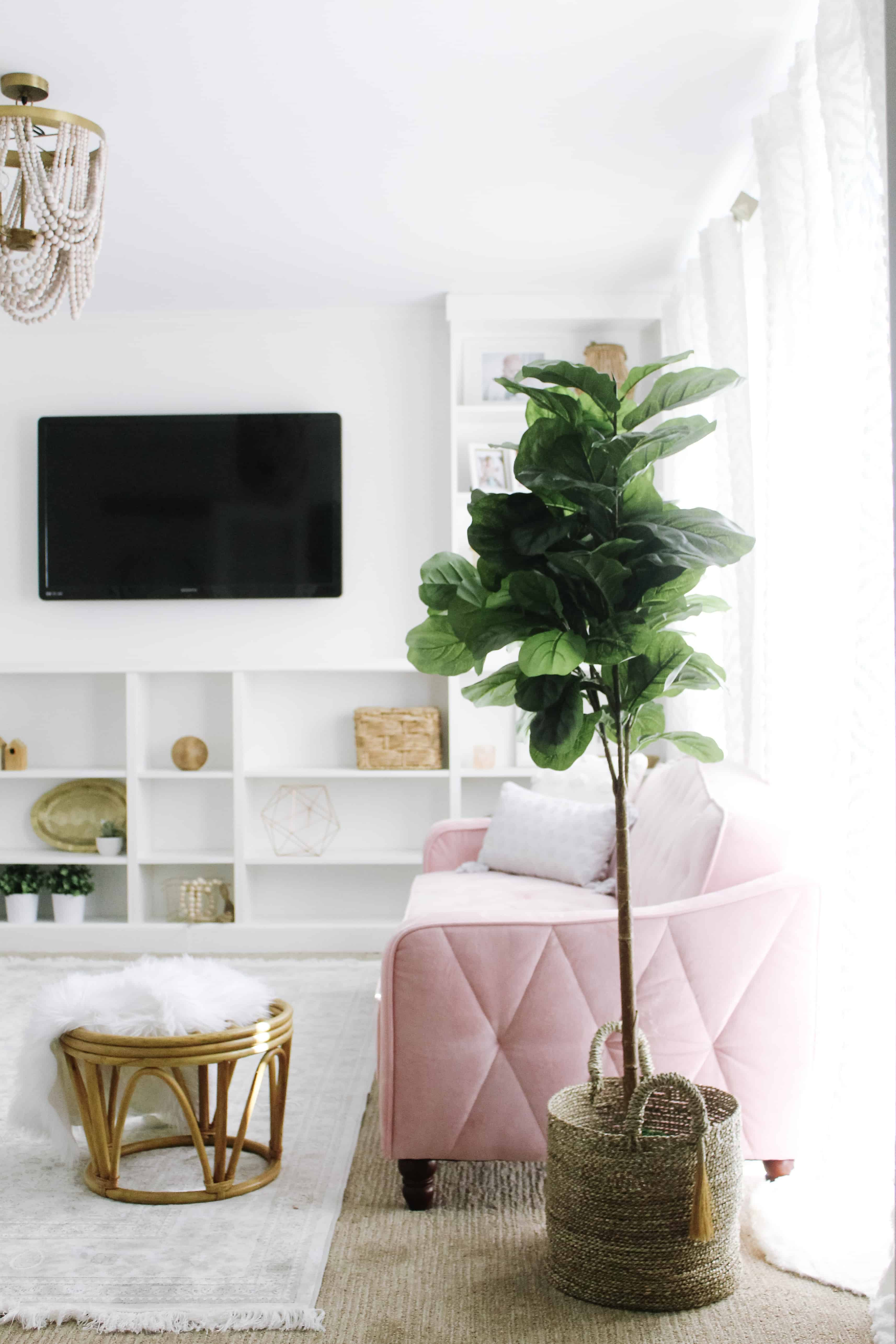 pink couch and fiddle leaf fig tree