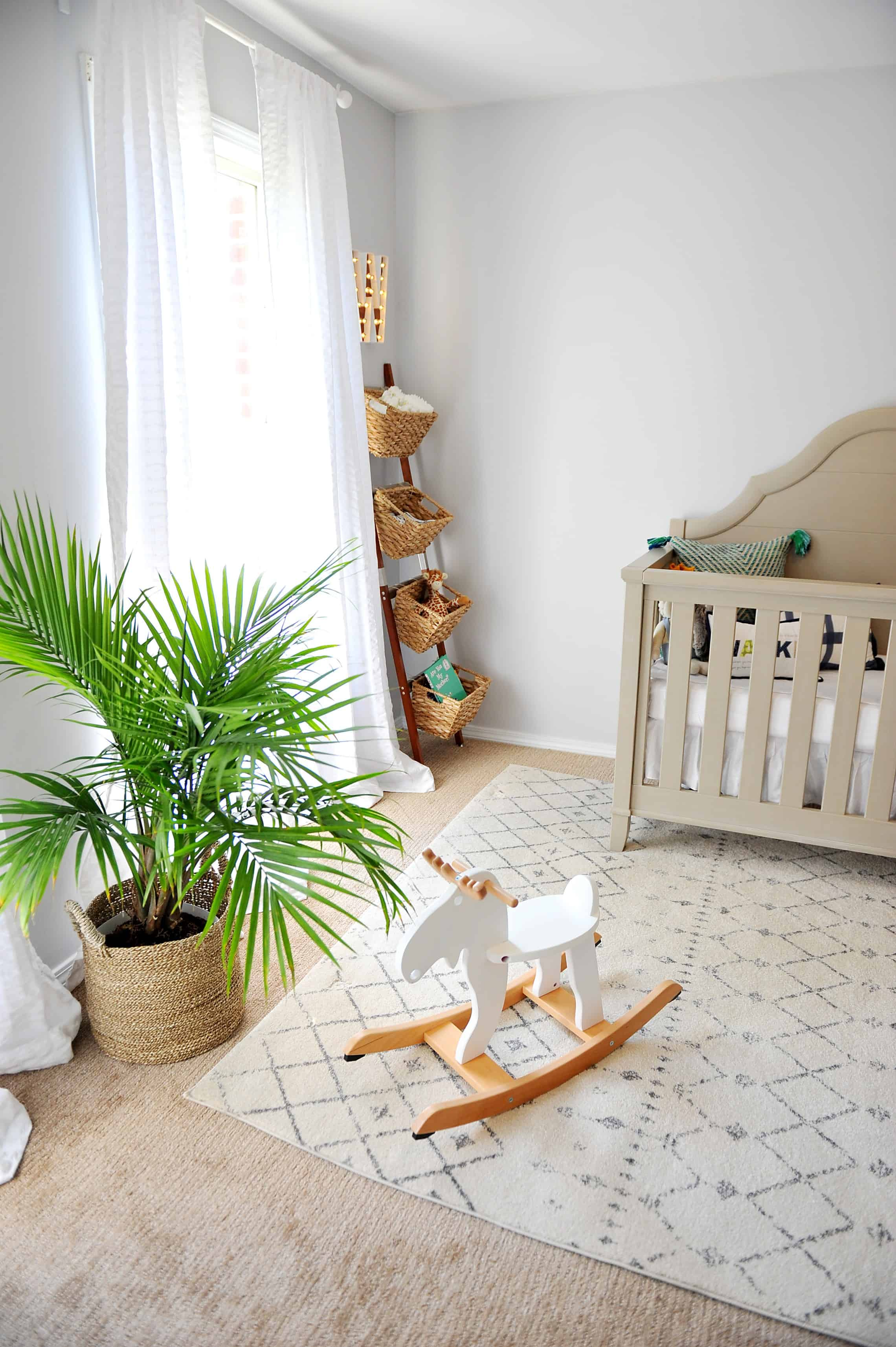 Plant in baby boy nursery
