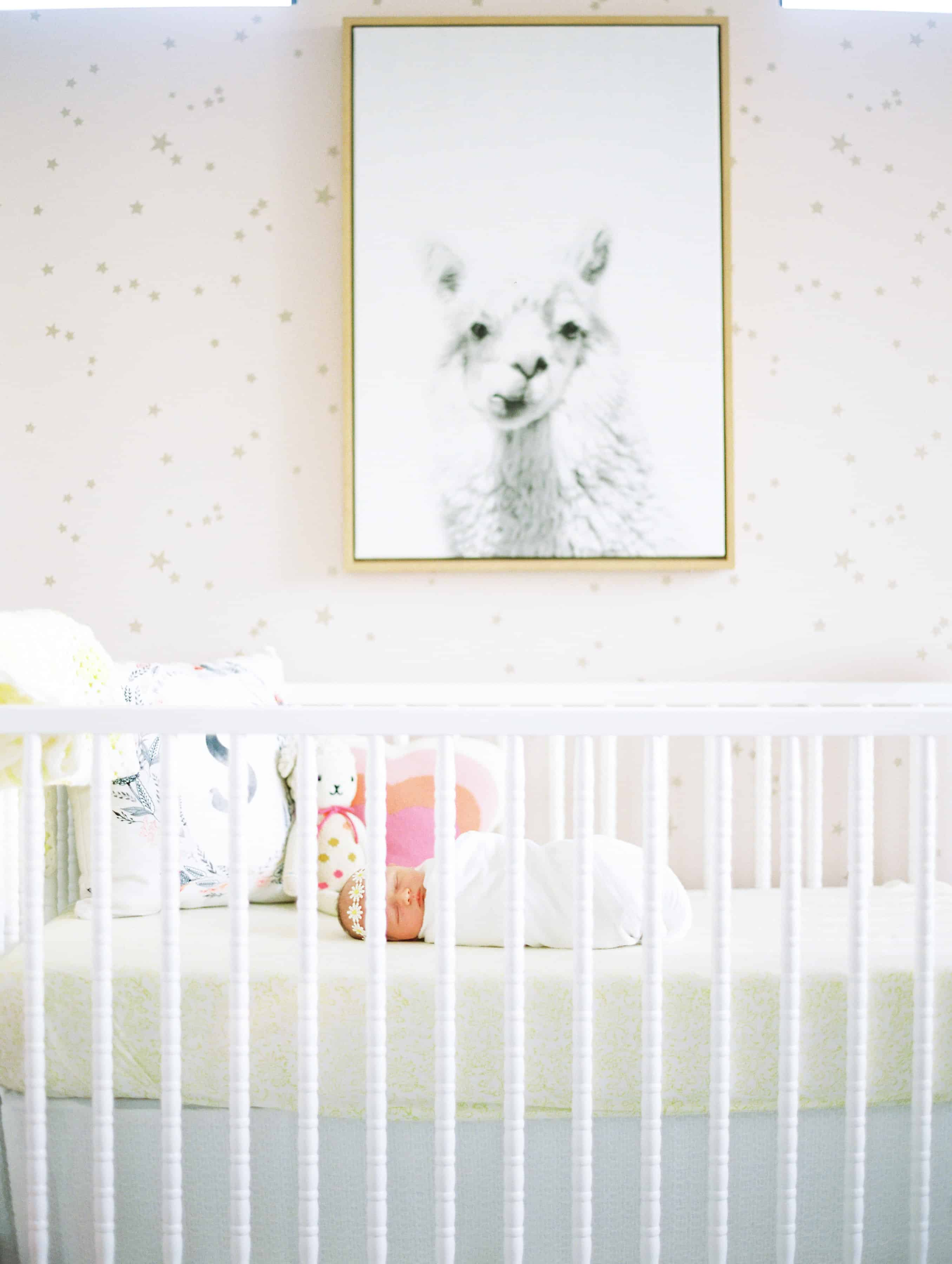 white crib in front of pink and gold star wallpaper with llama photo over crib
