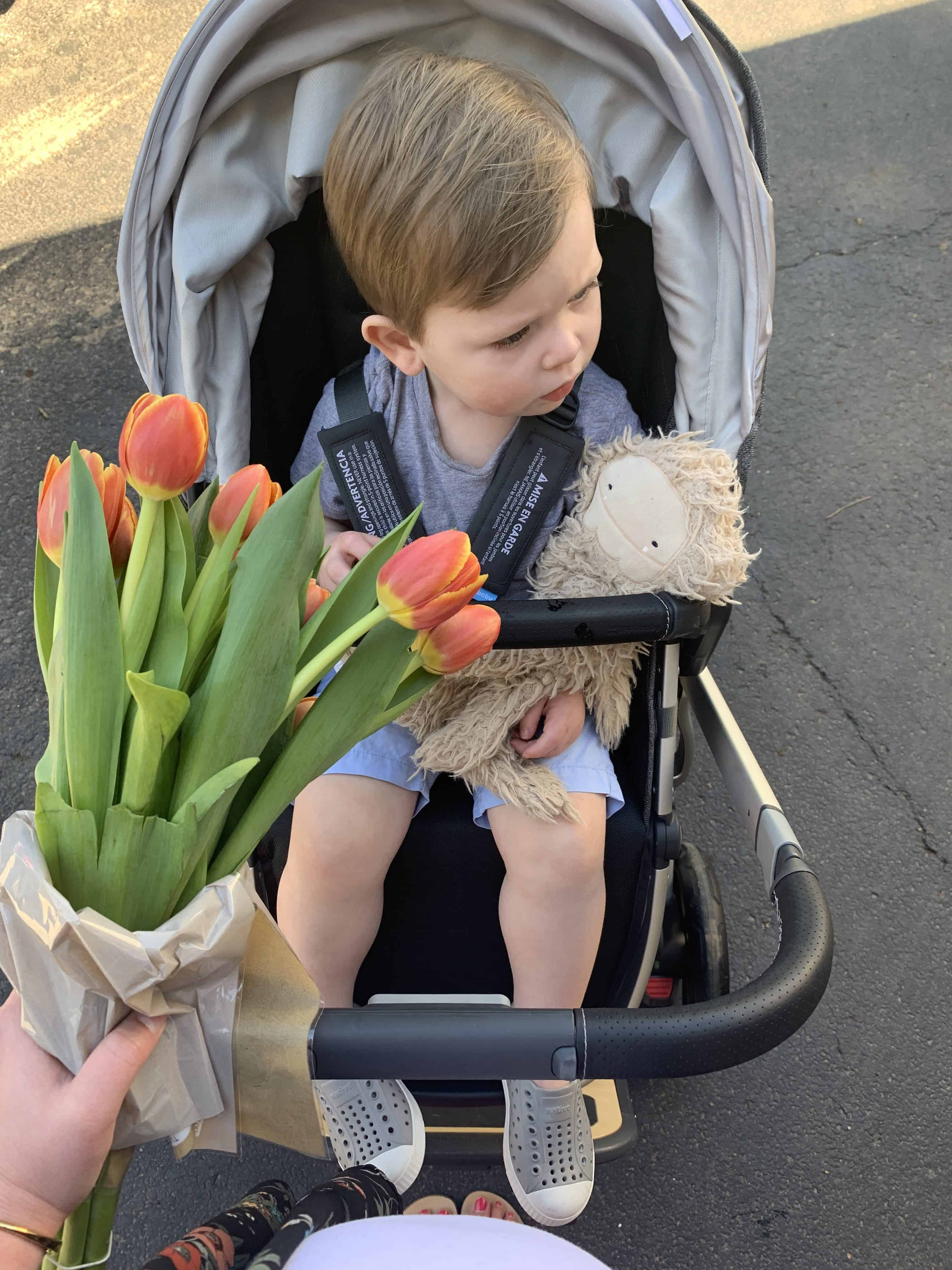 Little boy in uppa baby stroller with flowers