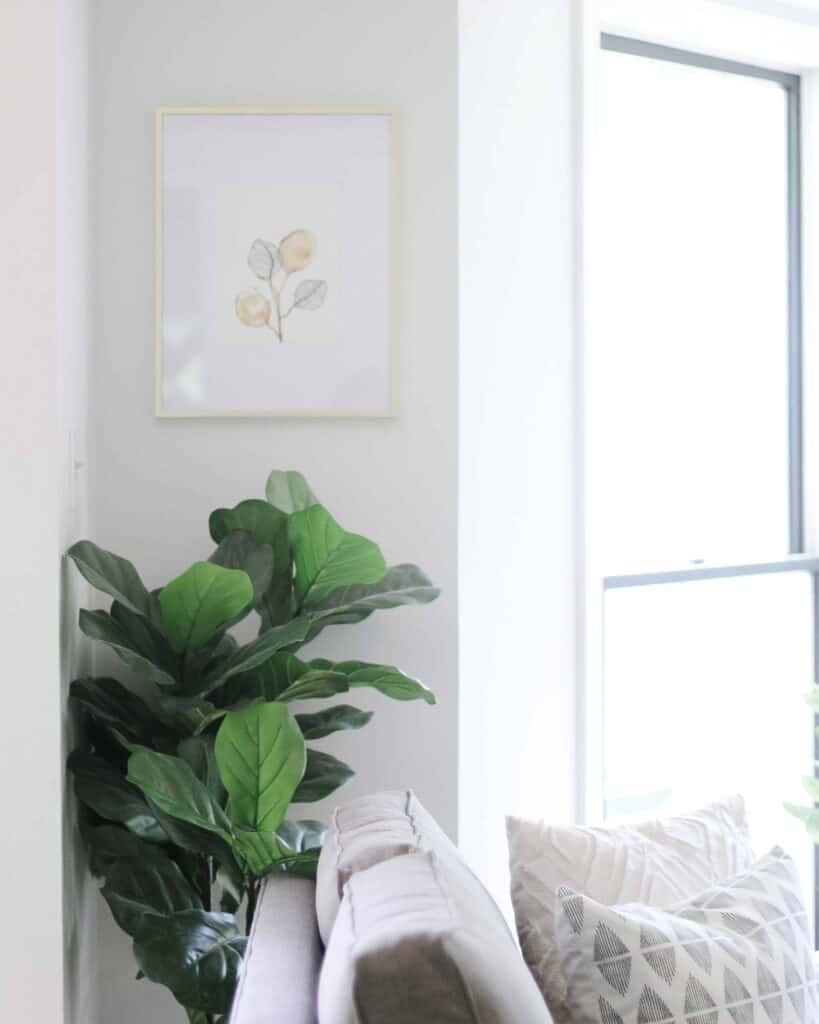 bright space with faux fiddle leaf fig