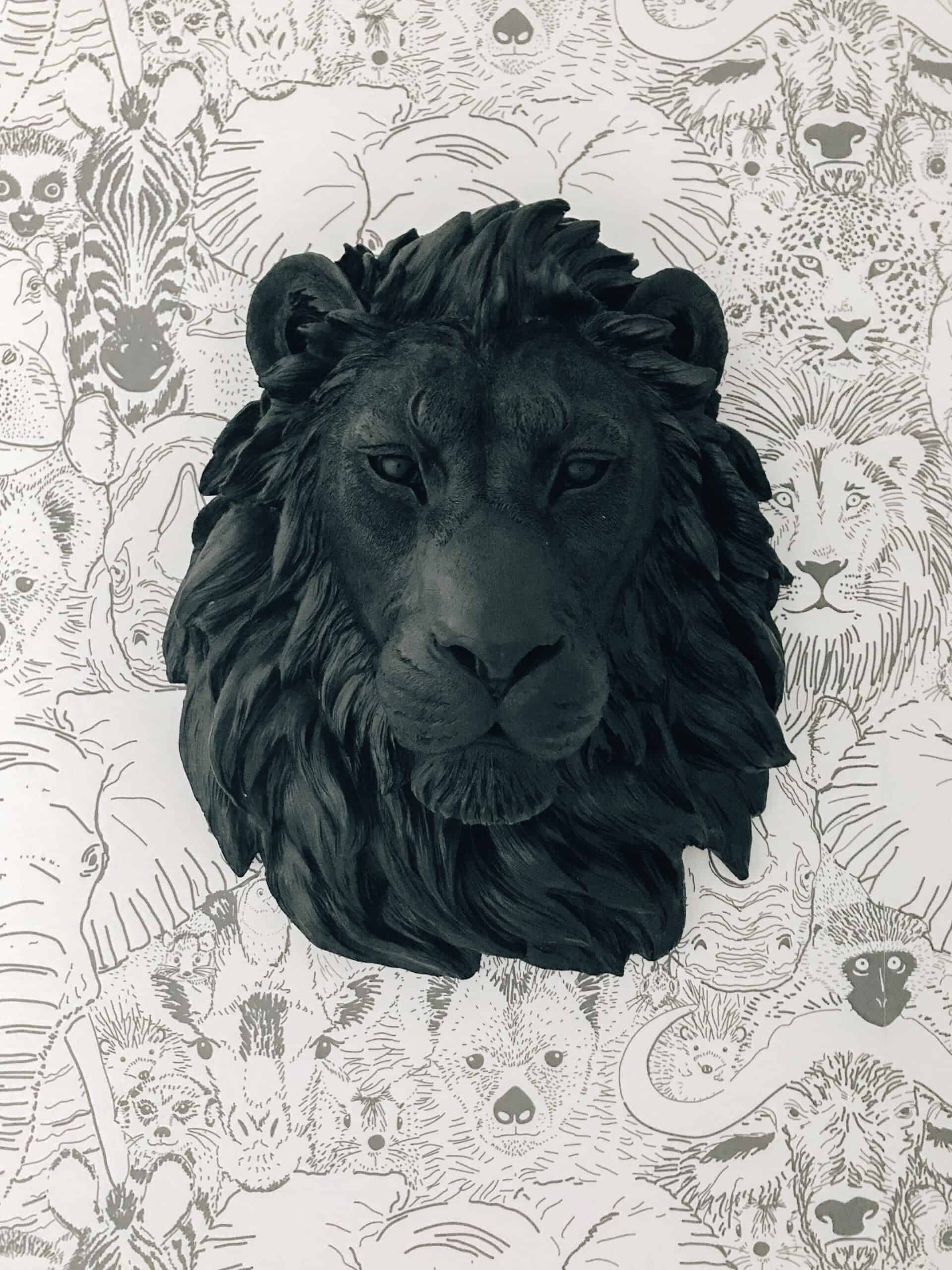 Boys Wallpaper with black lion head