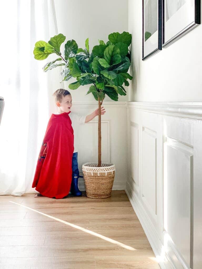 Little boy in a cape