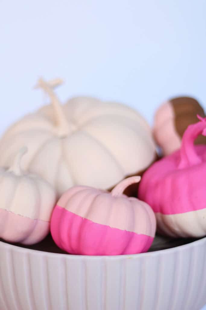 bowl of pink color block pumpkins