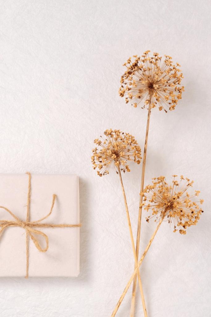 Gift next to dandelion stems