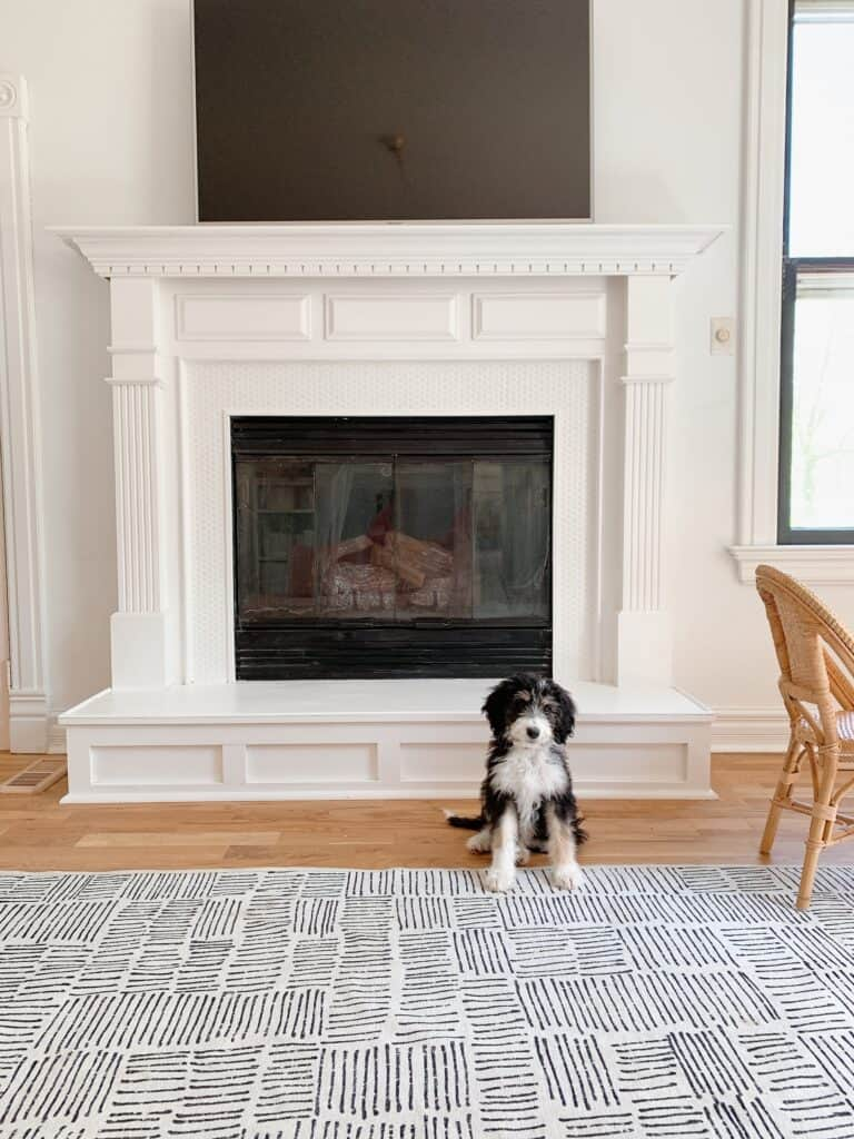 penny tile fireplace with puppy sitting in front of it