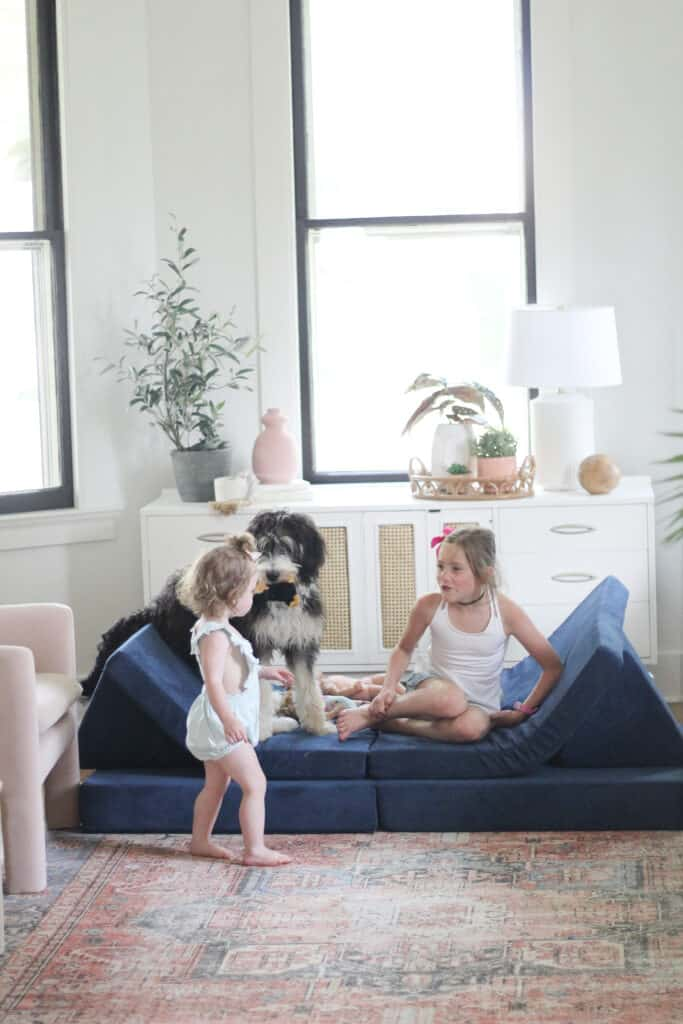 kids and dog on Nugget couch