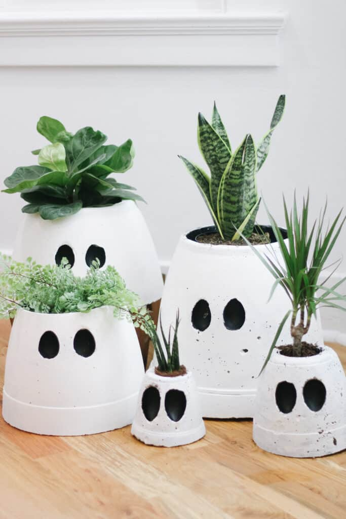 Cement Ghost planters