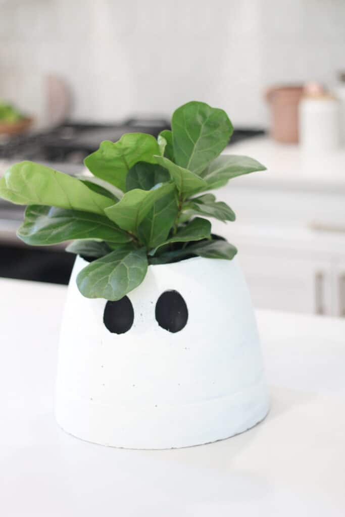 Cement ghost planter