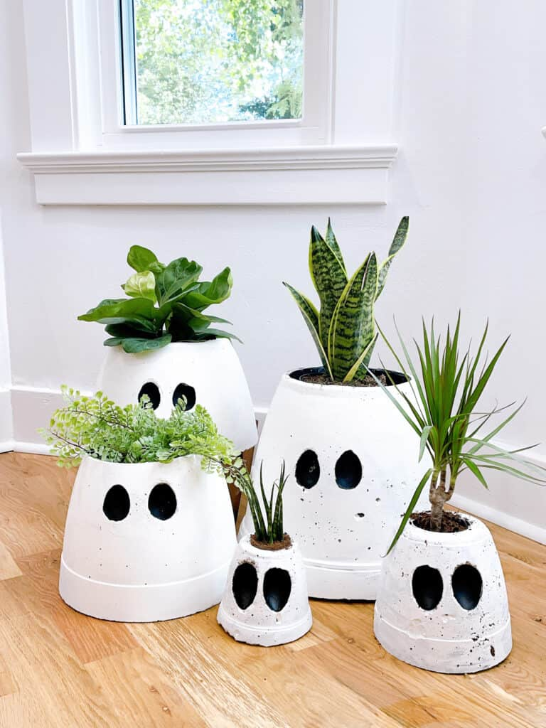Ghost pots with plants